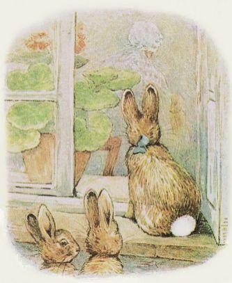 potter rabbits.