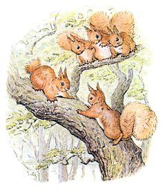 squirrel breatrix potter