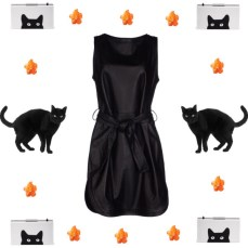 Black cats for Halloween