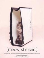 Cat in a Gucci bag by Oltin Doogaru for Harper's Bazaar Romania
