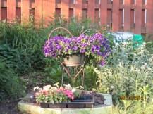 Before back garden