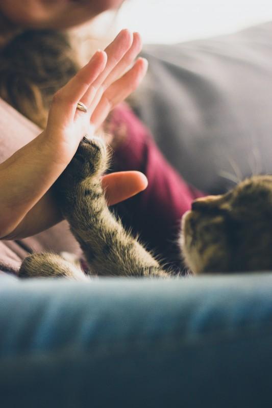 How to Help a Friend Through a Bad Decision