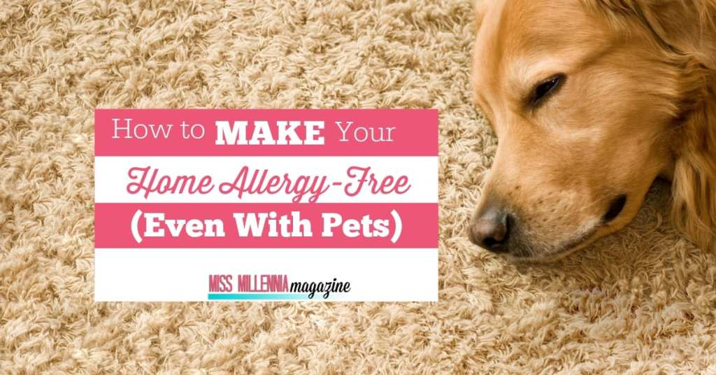 How to Make Your Home Allergy-Free (Even With Pets)