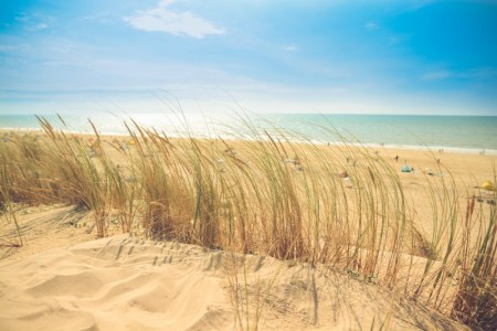 beach to visit for summer vacation