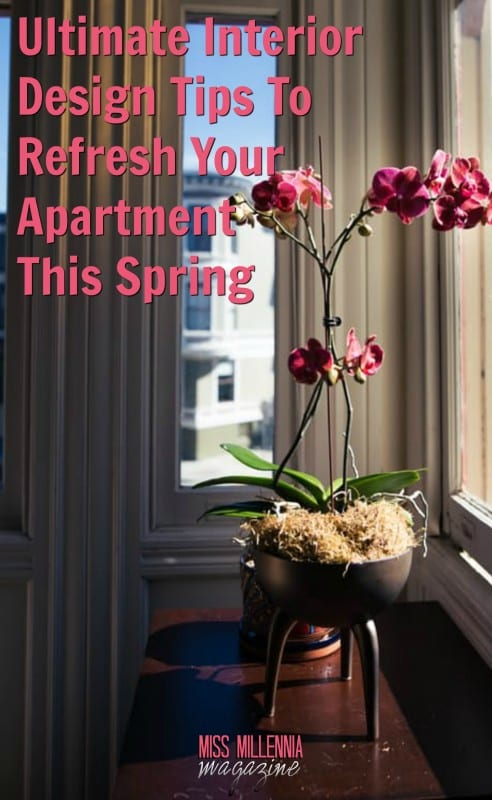 Ultimate Interior Design Tips To Refresh Your Apartment This Spring