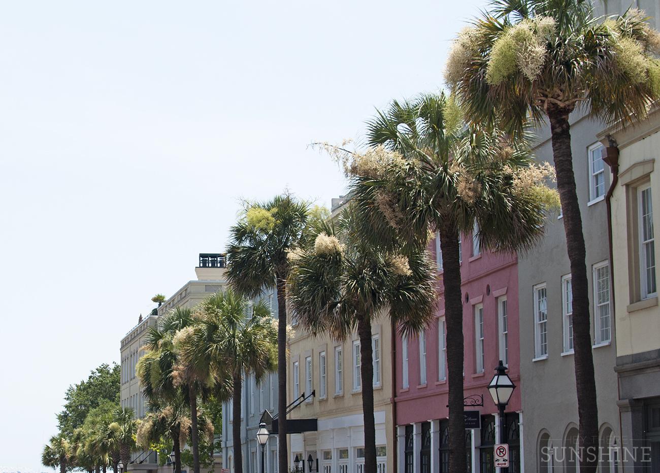 Snapshots from walking around in Charleston, SC
