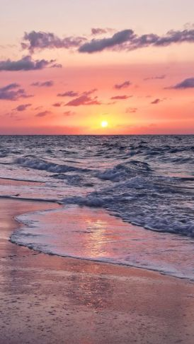 Beautiful sunset summer background wallpaper