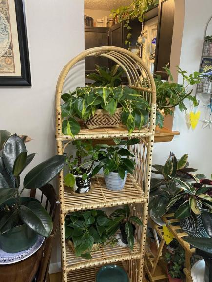 Wicker book shelve - plant stand