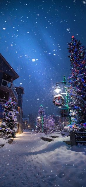 Winter night Christmas wallpaper free to download