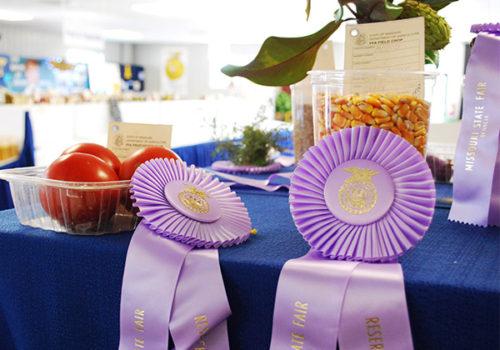 mo-state-fair-ribbons