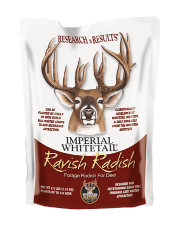 Imperial Whitetail Ravish Radish