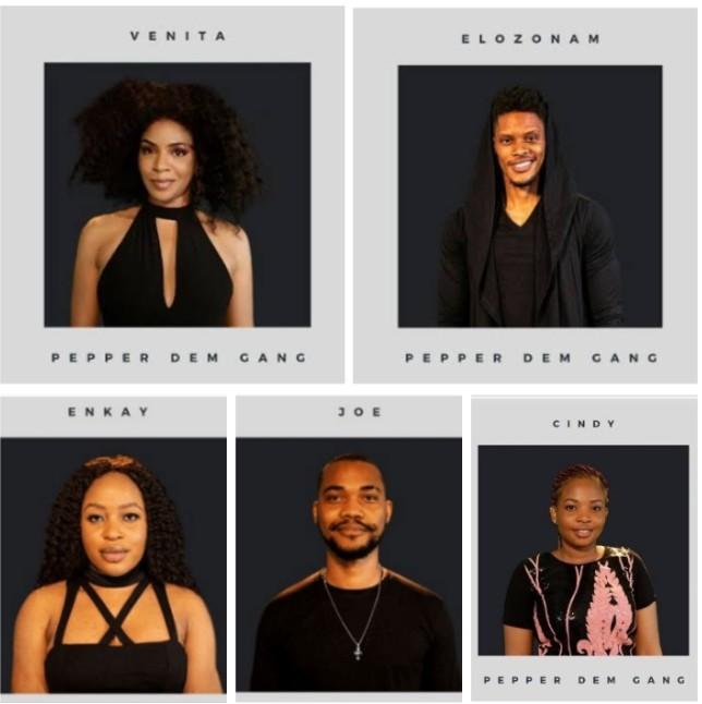 #BBNaija: Ebuka Speaks On 5 New Housemates Being Fake