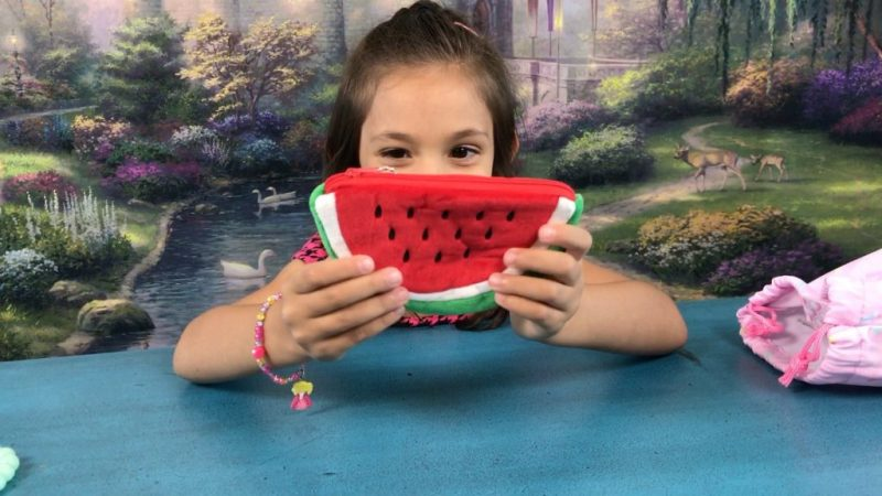 Blippo Kawaii Plush Watermelon Purse