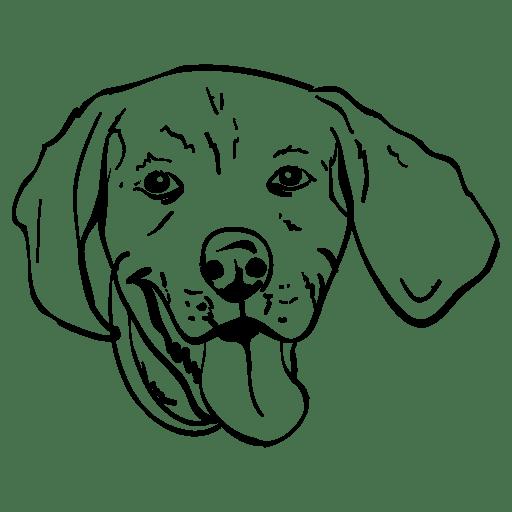 Ben Beagle Detail Icon 512px