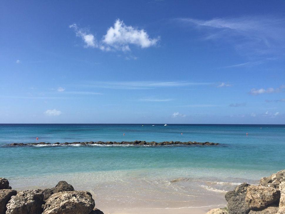 Barbados Cobbler's Cove