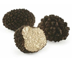 Black Winter Truffle