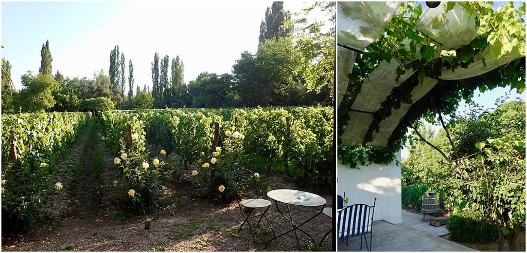 Finca Adalgisa Garden