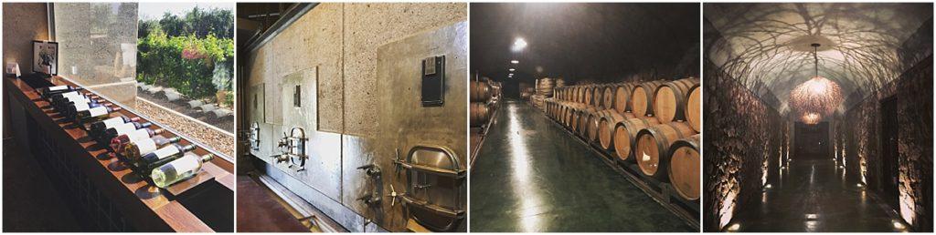 Wine Mendoza