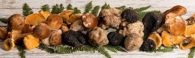 Black and white truffle presentation