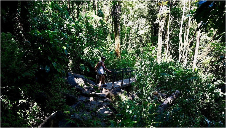 Hiking Hana