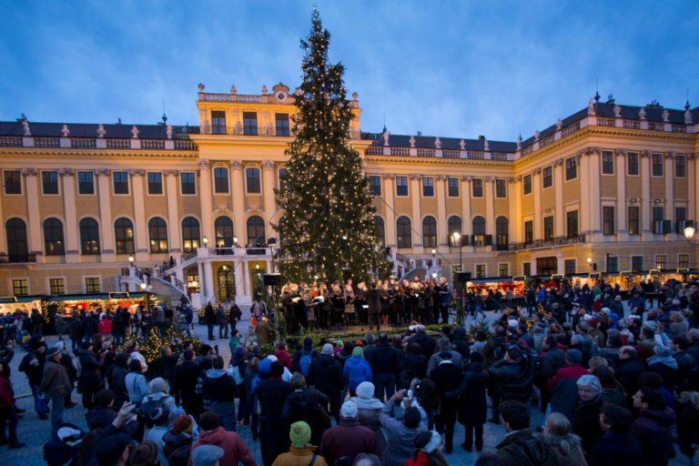 Christmas Market at Schönbrunn
