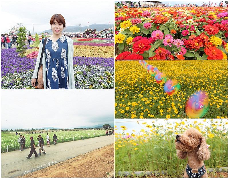 2014新社花海0