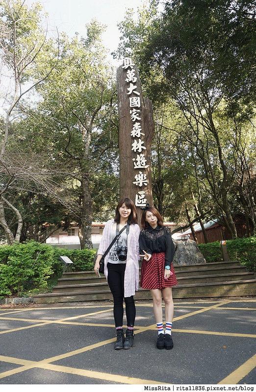 清境觀光巴士 奧萬大森林遊樂區 賞楓15