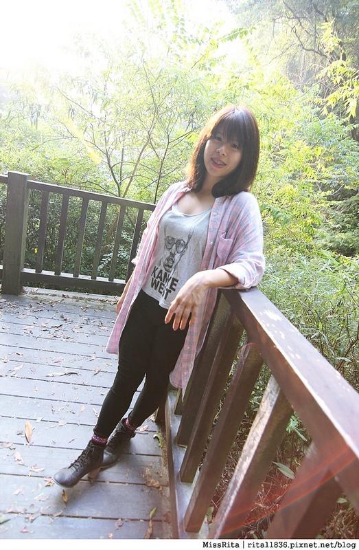 清境觀光巴士 奧萬大森林遊樂區 賞楓56-