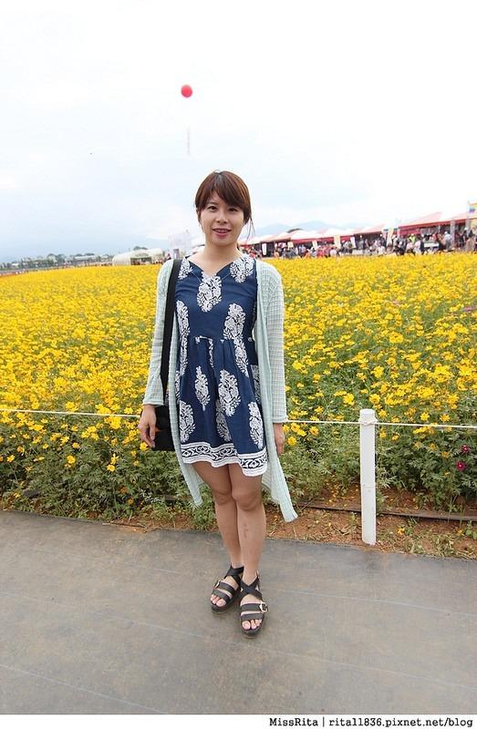 2014新社花海33