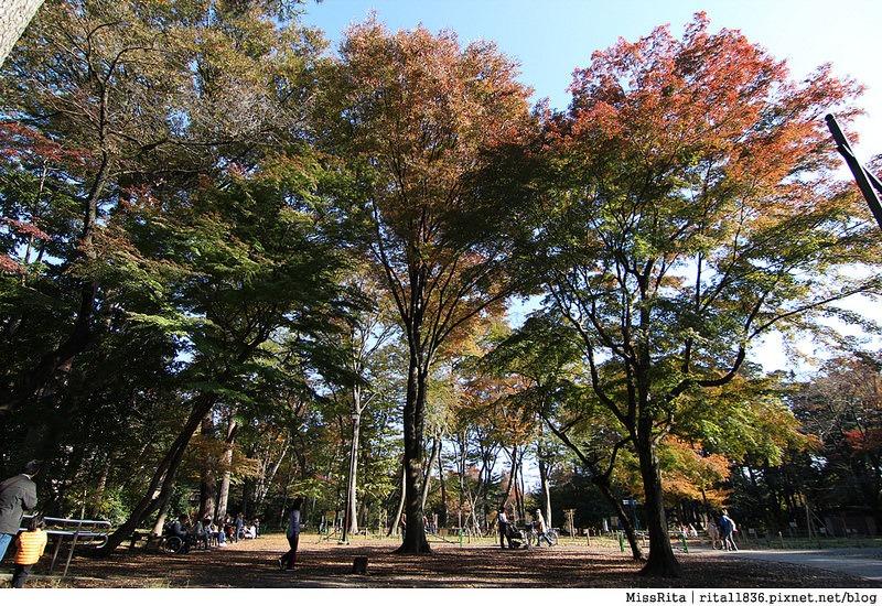 日本 東京 自由行 行程規畫24