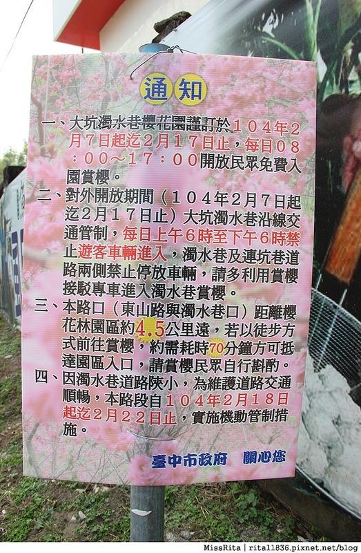 2015台中賞櫻 大坑 濁水巷櫻花林0--