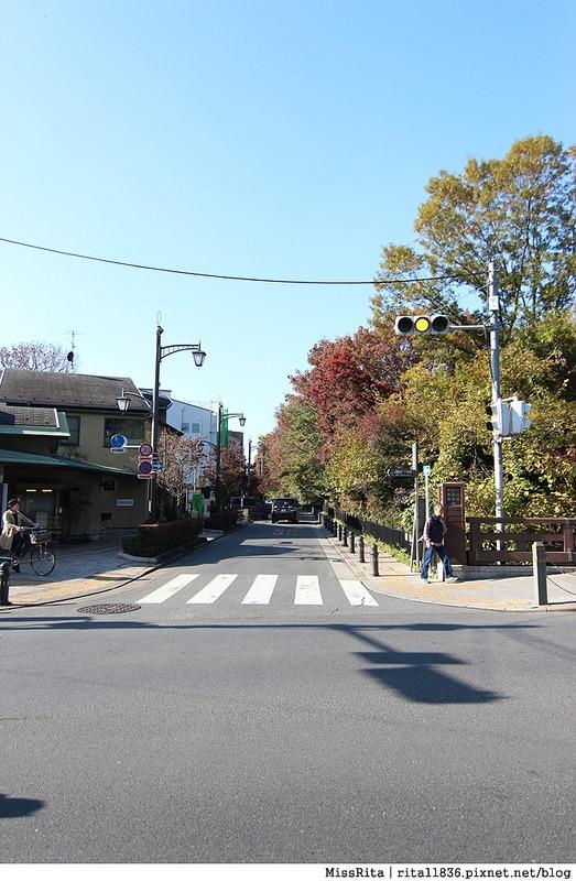 東京 好玩景點 三鶯之森吉力卜宮崎駿美術館 井之頭恩賜公園49