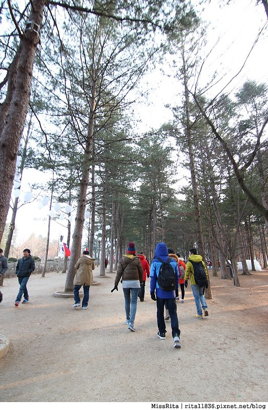 韓國 旅遊 韓國好玩 韓國 南怡島 韓劇景點 冬季戀歌場景 南怡島13