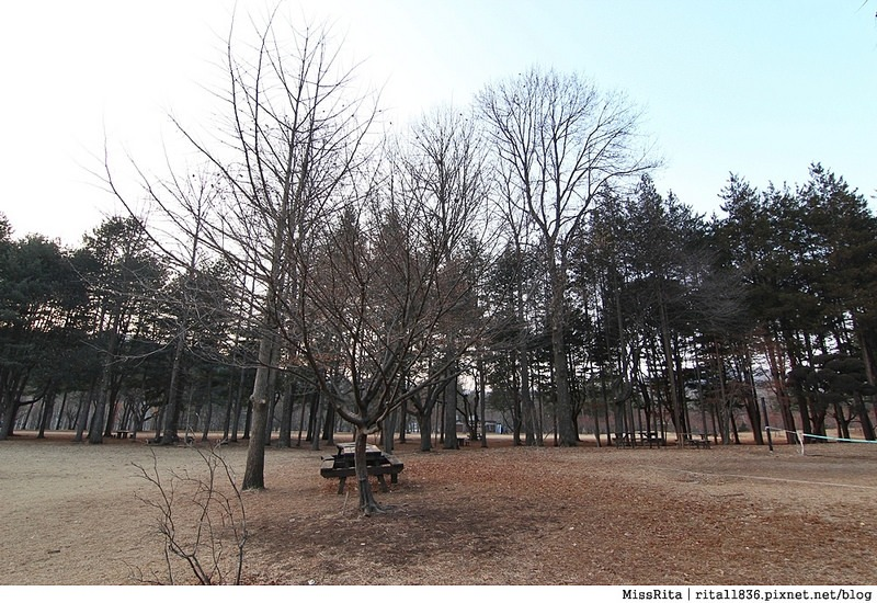 韓國 旅遊 韓國好玩 韓國 南怡島 韓劇景點 冬季戀歌場景 南怡島36