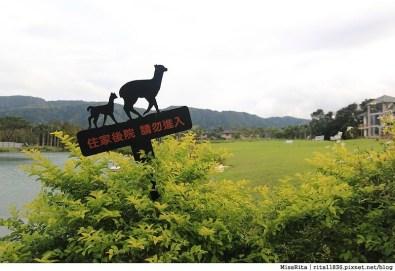 花蓮景點 花蓮雲山水 雲山水夢幻湖 雲山水自然生態農場 花蓮壽豐 花蓮外拍景點 有熊的森林9