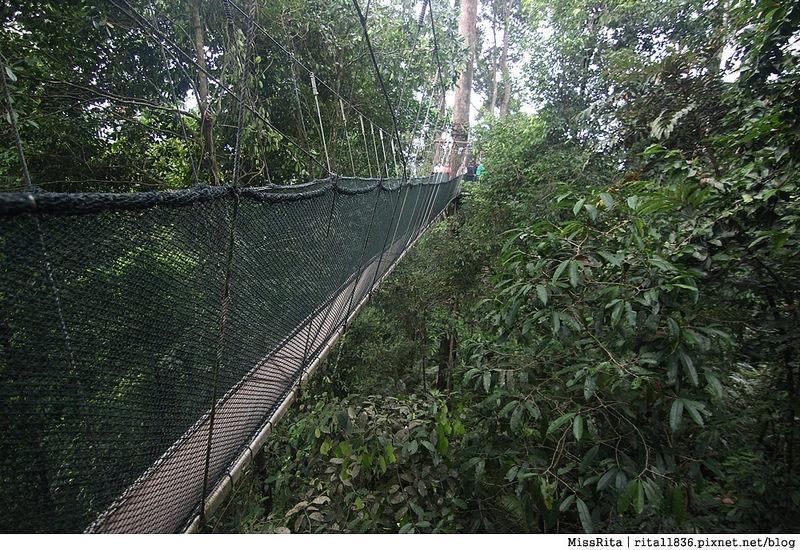 馬來西亞自由行 馬來西亞 沙巴 沙巴自由行 沙巴神山 神山公園 KinabaluPark Nabalu PORINGHOTSPRINGS 亞庇 波令溫泉 klook 客路 客路沙巴 客路自由行 客路沙巴行程64