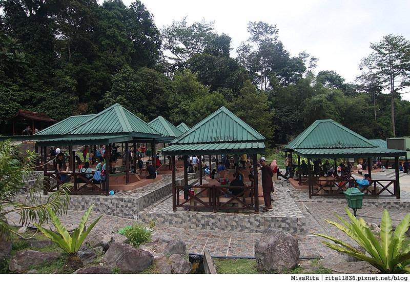 馬來西亞自由行 馬來西亞 沙巴 沙巴自由行 沙巴神山 神山公園 KinabaluPark Nabalu PORINGHOTSPRINGS 亞庇 波令溫泉 klook 客路 客路沙巴 客路自由行 客路沙巴行程54