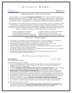 Management Professional Resume Sample