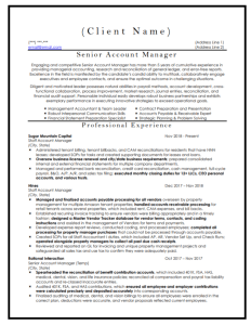 Senior Account Manager Resume Sample
