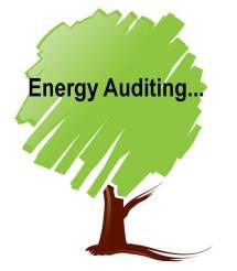 EnergyAuditing