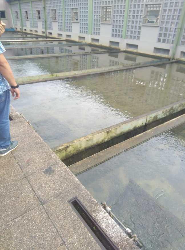 Filtration pond