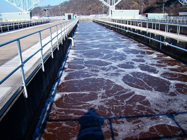 Secondary treatment aerates the wastewater and adds 'activated sludge' -- a concotion of bacteria that digests organic material in the wastewater.