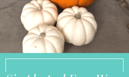 Simple and Easy Ways to Add Fall to Your Home