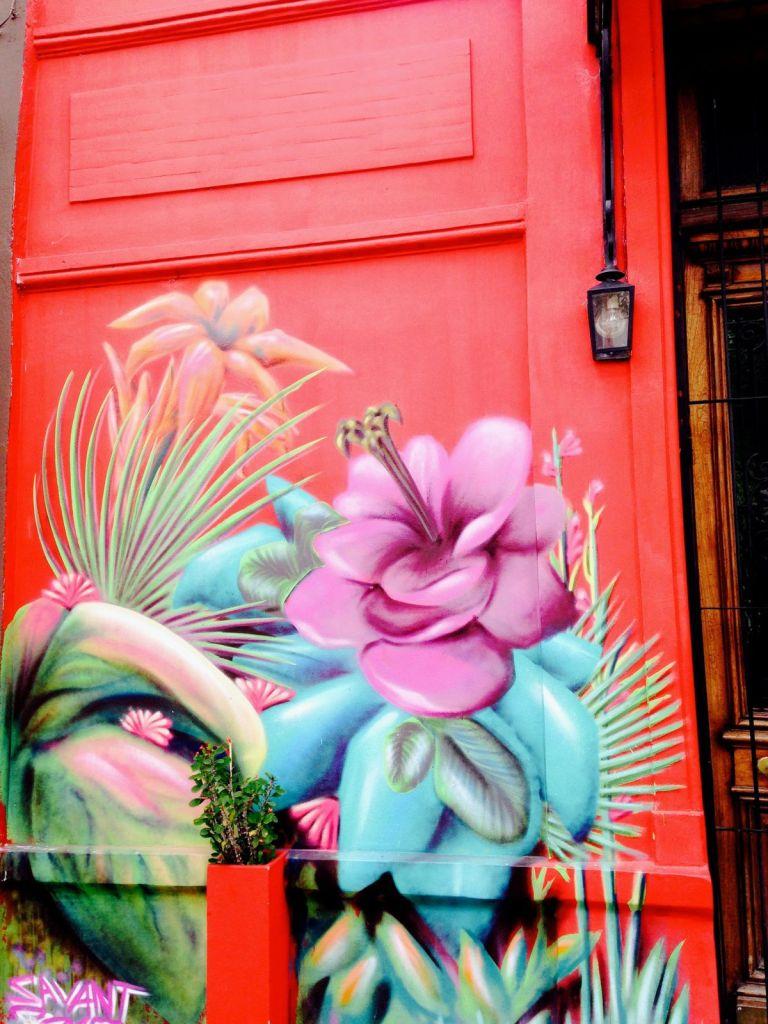 graffiti présents dans le quartier de Palermo Soho Buenos Aires