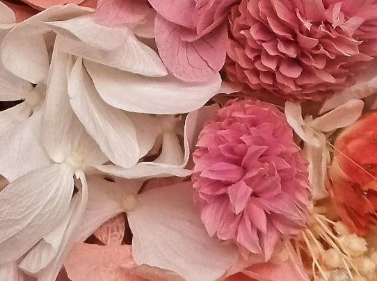 cuadro de flores preservadas