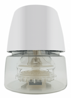 Must-Have for the Indoors – GoodAire's Air Revitalizer H1