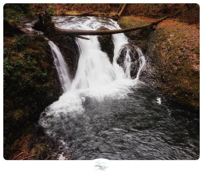 Twin Falls Silver Falls Park