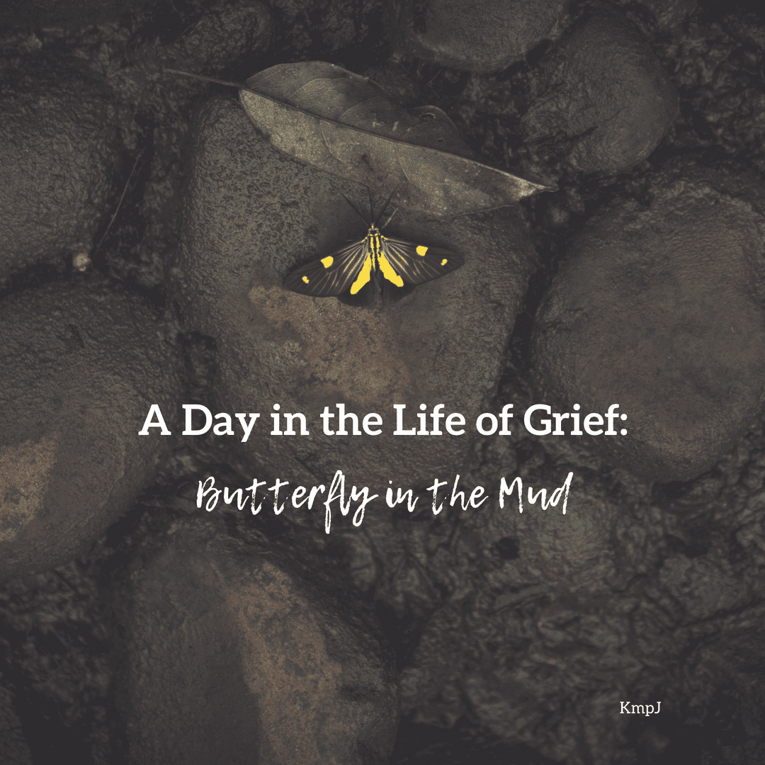 A Day in the Life of Grief: Butterfly in the Mud