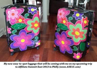 Missy Ward's Luggage