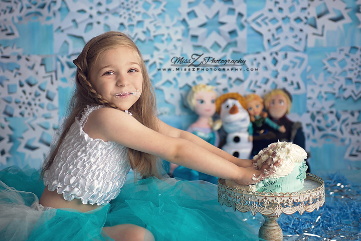 Frozen Cake Smash For 6 Year Old New Bedford Ma Miss